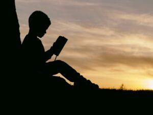 uczenie się, zachód słońca, nauka, wiedza, edukacja